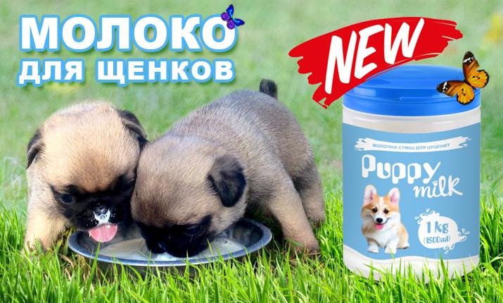 Покупаем молочную смесь для щенков